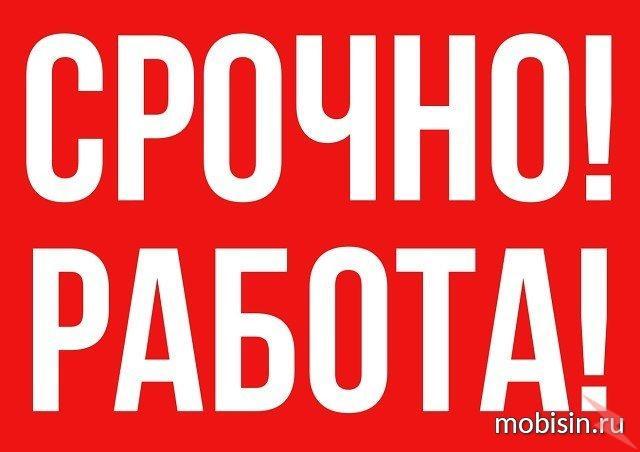 Онлайн- консультант., Минусинск